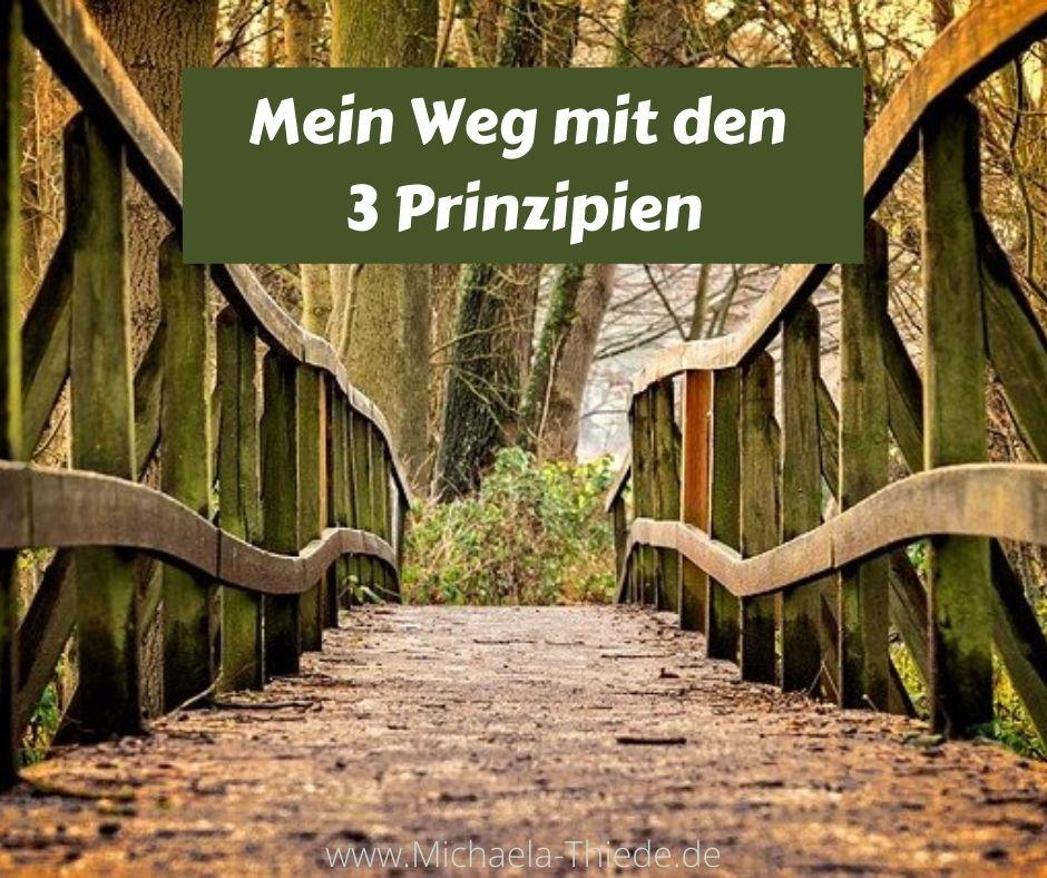 mein Weg mit den 3 Prinzipien